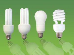 105W Spiral Light Energy Saving Lamp with CFL Bulb (BNF17-FS-B) pictures & photos