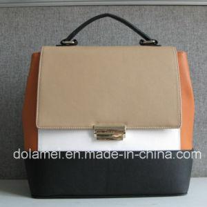 2015 New Collection Handbag Handbags Bag Women Bag Handbags Bag Women Bag Tote Bag with Luck (AD121106)