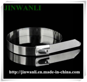 Ball Self-Locking Type PVC Coated Stainless Steel Cable Tie pictures & photos