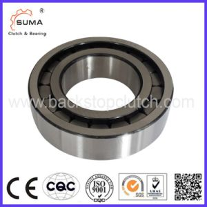 Two-Way Double Row Full Complement Cylindrical Roller Bearing (SL01) pictures & photos