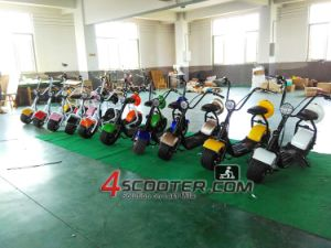 Cabin Charge Buy Electric Order Purchase Harley Citycoco Electric Scooter Es8004 EEC Approved pictures & photos