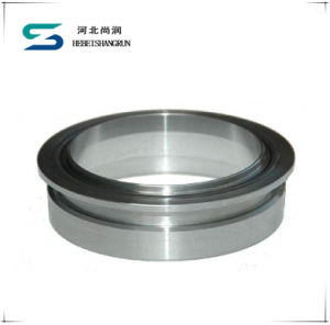 Super Duplex Stainless Steel O-Ring Flange Angle Ring Flanges pictures & photos