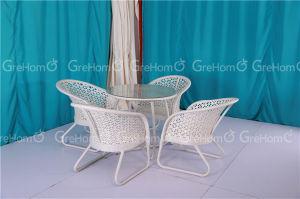 Royal Garden Patio Furniture for Outdoor pictures & photos