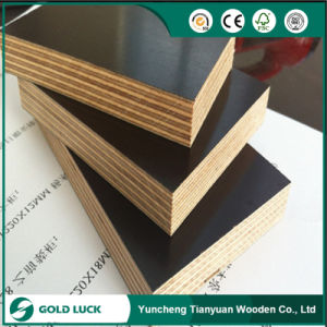 Building Construction Site Use Scaffolding Formwork Film Faced Plywood pictures & photos