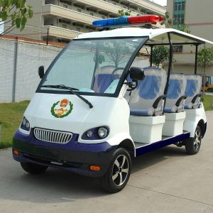 CE Approve 8 Seats Electric Cruise Car for The Playground (DN-8P) pictures & photos