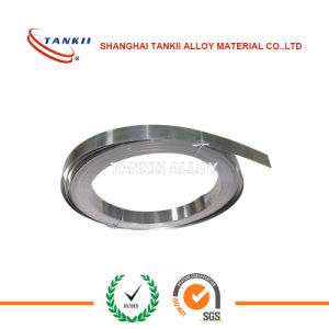 Nickel Chrome Alloy Protoloy Strip for Heating Element pictures & photos