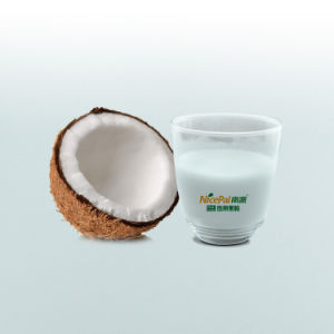 Manufacturer Direct Supply Food Ingredient Coconut Milk Powder / Coconut Powder pictures & photos