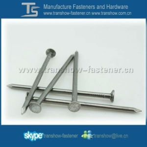 Common Iron Nails with Brand Topcreation in Ningbo China pictures & photos