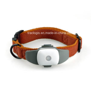 Mini GPS Pet Traker for Dogs and Cats Tracking pictures & photos