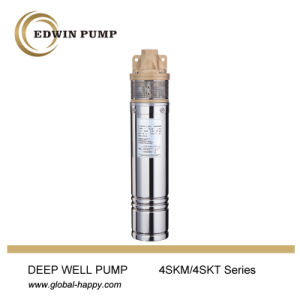 4sdm16 Submersible Water Pump pictures & photos