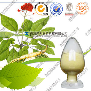 Top-Selling HPLC 1%-10%Ginsenoside Ginseng Leaf Extract pictures & photos