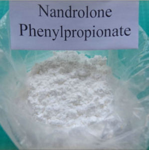 Steroid Hormone Nandrolone Phenylpropionate Durabolin for Muscle Building pictures & photos