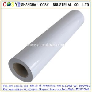 Adhesive White Vinyl for Printing and Signs pictures & photos