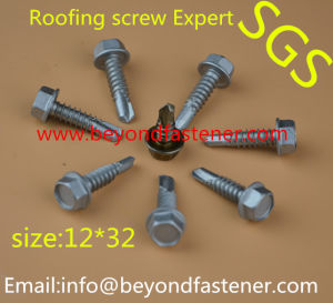 Ribs Screw Wing Tek Screw Self Tapping Screw pictures & photos