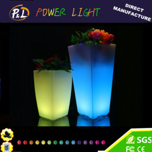 Garden PE Plastic Colorful Illuminated LED Flower Plant pictures & photos