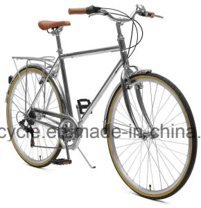 700c 7 Speed Index Vintage Lady Bike Europe Retro Lady Bicycle Vintage Lug Bike Lugged Bicycle pictures & photos