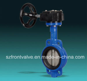 Cast Iron/Ductile Iron Wafer and Lugged Butterfly Valves pictures & photos