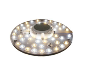 Hot Sale 12W Ceiling Lamps with LED Light Source pictures & photos