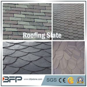 Multi-Color Natural Slate Roofing Tiles/ Wall Cladding Tiles pictures & photos