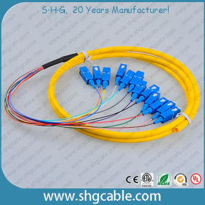 12 Core Sc/Upc Single Mode Bunched Optical Fiber Pigtail pictures & photos