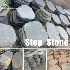 Rusty Brown/Yellow Wood Beige/Black/Grey/Green Slate/Granite Step Stone for Garden and Patio pictures & photos