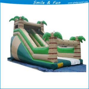 Inflatable Slide for Amusement Park Games