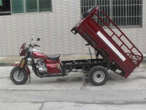 200cc Heavy Load Motor Gasoline Three Wheel Cargo Motorcycle pictures & photos