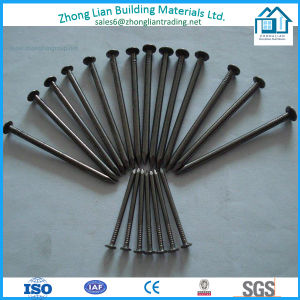 Iron/Steel Common Nail (Galvanized, Black) (ZL-CN) pictures & photos