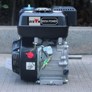 Bison Single Cylinder Ohv Structure Gasoline Engine for Hot Sale pictures & photos