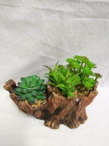Best Selling Artificial Plants and Flowers of Succulent Gu-SD0210 pictures & photos