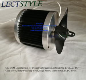 120V 240V 3/4HP 1HP Lake& Pond BLDC Electrical Submersible Motor on De-Icer Water Agitator pictures & photos