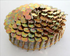 Coil Roofing Nails pictures & photos