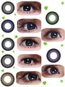 2012 Fashion Eye Lace
