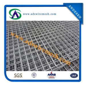 Slow Price 6X6 10X10 Reinforcing Welded Wire Mesh Panel pictures & photos