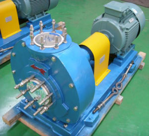Chemical Circulation Pump (MMCP) pictures & photos