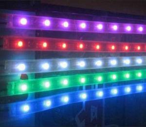 DC12/DC24 LED Strip Light (ZDM-LSL5050-WPG30-12W)