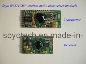 2.4GHz Digital Wireless Audio Transmitter Module pictures & photos