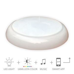 24W Pure White Speaker LED Downlight