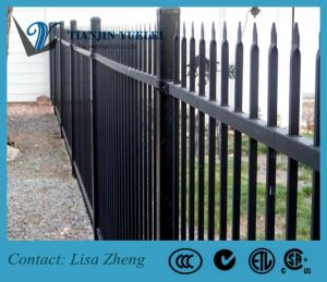 Montage Ornamental Steel Fence /Wrough Iron Fence