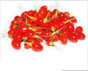 Organic Goji Berries (350grains/50g) pictures & photos