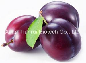 Plum Juice Powder/Plum Fruit Powder/Plum Extract Powder/Plum Juice Concentrate Powder pictures & photos