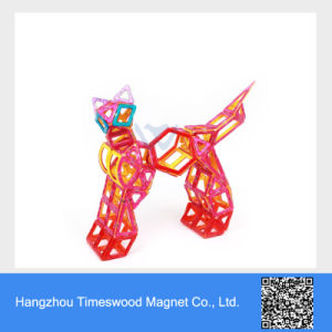 The Professional Manufacturer of Magnetic Toys pictures & photos