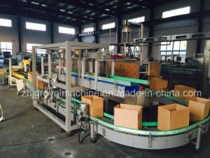 Carton Maker Carton Filler Carton Sealer Machine pictures & photos