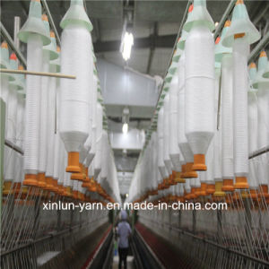 Ne 30/1 Virgin Polyester Spun Yarn pictures & photos