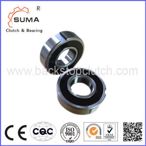 Zz6203 PP Internal Freewheels with Sprags and Bearing Support pictures & photos