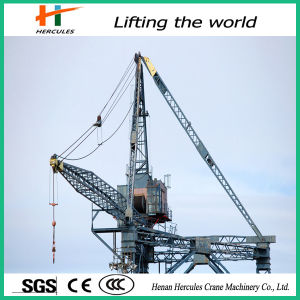 Hot Sale Luffing Tower Crane L220 pictures & photos
