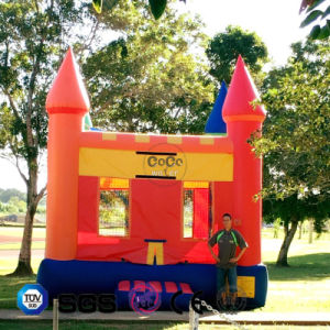 Coco Water Design Inflatable Outdoor Playground Game/Kids Toy LG9095 pictures & photos