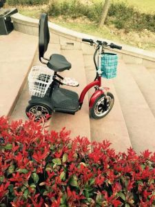 Three Wheel Electric Scooter with Golf Bag Holder (et-es002-g) pictures & photos