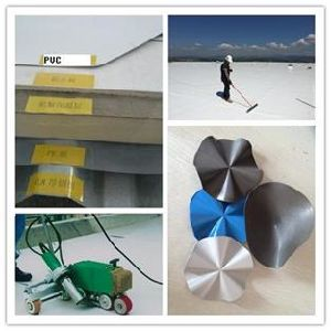 Building Materials/ Pond Liner/ Pool Liner/ PVC Geomembrane/ PVC Sheet/ Roof Materials /Plastic Pond Liner/ Vinyl Pond Liner/ Waterproof Membrane pictures & photos