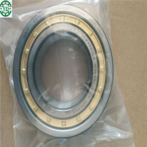 Nup2210ecm SKF Bearing Made in Germany Cylindrical Roller Bearing pictures & photos